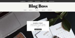 Blog Boss on Divi Cake