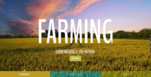 Divi Farm (Agriculture, Family Farming) on Divi Cake