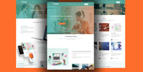 Alassa – Company, Agency on Divi Cake