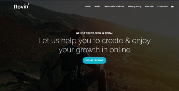 Rovin – Agency, Company on Divi Cake