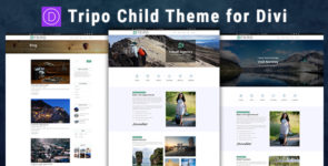 Tripo Divi Child Theme on Divi Cake
