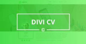 Divi CV on Divi Cake