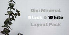 Divi Minimal Black and White Layout Pack on Divi Cake