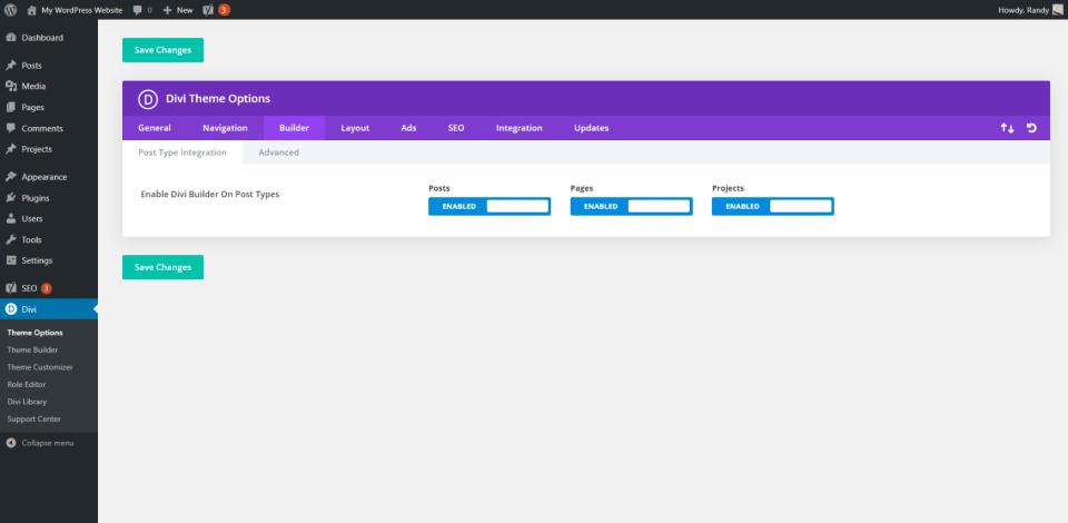 Guia Divi Theme Options Builder