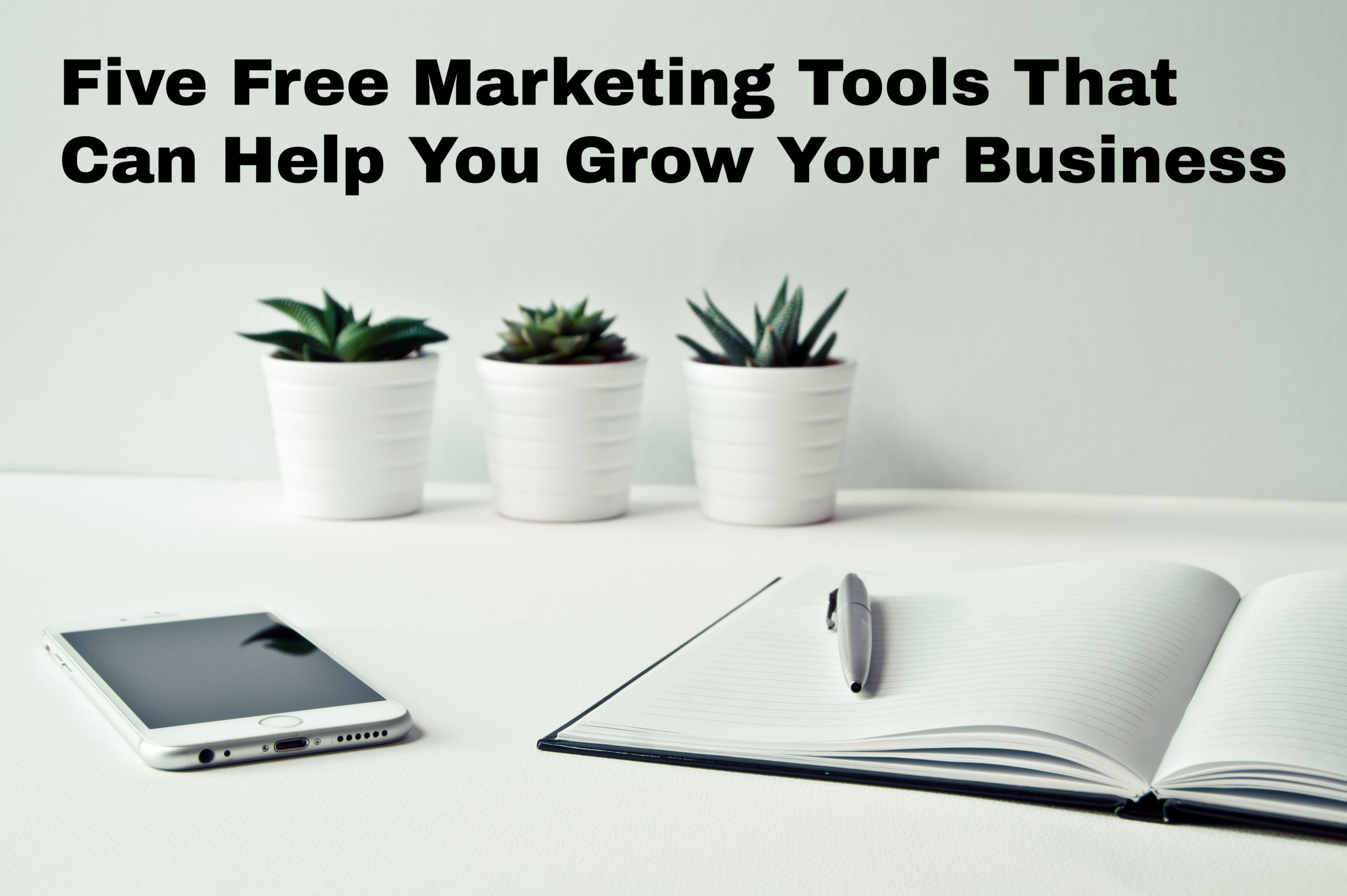 5 Free Marketing Tools to Help You Grow Your (Divi) Business