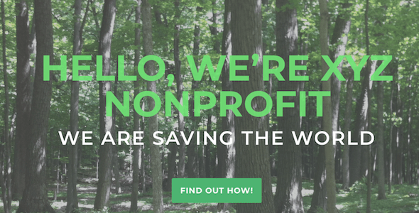 Nonprofit One Page on Divi Cake