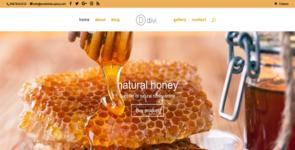 honey shop Divi Layout Pack on Divi Cake