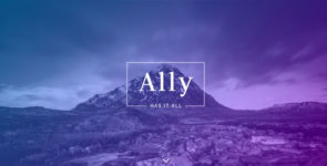 Ally on Divi Cake