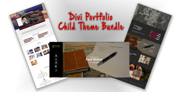 Divi Showcase : Divi Portfolio Child Theme Bundle on Divi Cake