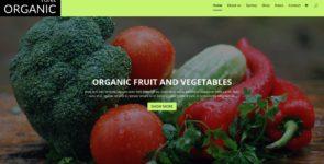 Organic on Divi Cake