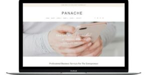 Panache Divi Business Coaching Theme on Divi Cake