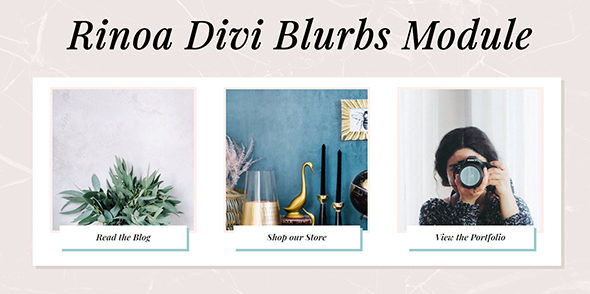 Rinoa Blurbs on Divi Cake